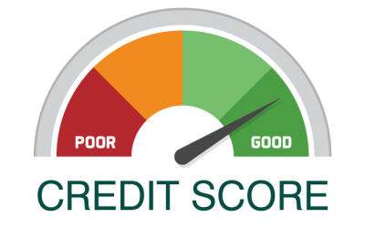 Where to find a free business credit report